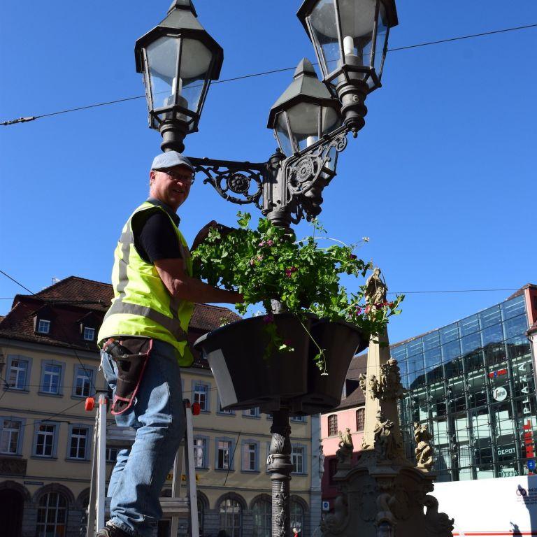 Anbringen eines Flower Baskets an einer Laterne in Würzburg