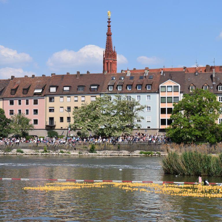 Entenrennen in Würzburg